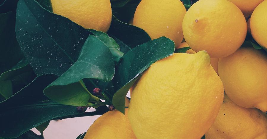 Ako získať 5 až 10-krát viac živín z citrónov