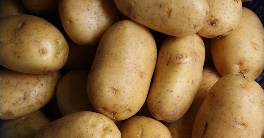Čo viete o zemiakoch a je dobré ich jesť každý deň?